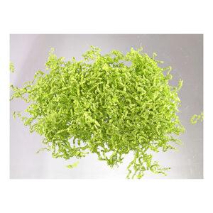 Χόρτο Sizzle - 1 κιλό - Λαχανί