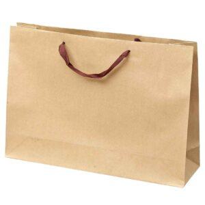 Τσάντα οικολογική 55 x 15 x 39 εκ. Σετ των 10 τεμαχίων