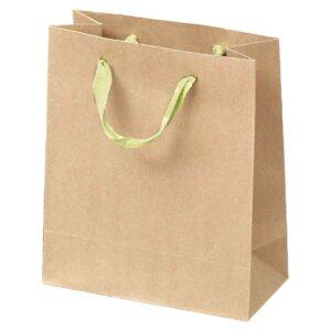 Τσάντα οικολογική 17 Χ 9 Χ 23 εκ. Σετ των 10 τεμαχίων